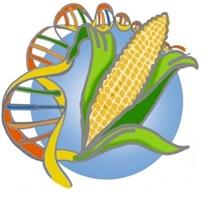 autorité européenne de sécurité des aliments (efsa)